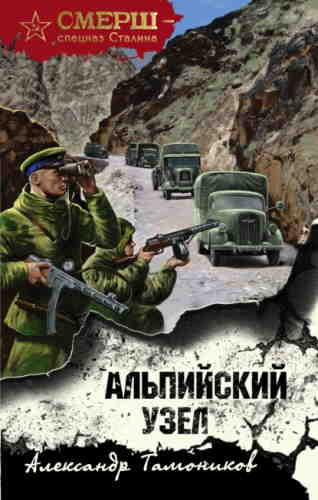 Александр Тамоников. Альпийский узел
