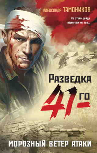 Александр Тамоников. Морозный ветер атаки