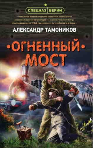 Александр Тамоников. Огненный мост