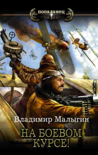Владимир Малыгин. Лётчик 2. На боевом курсе!