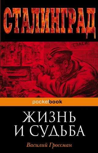 Василий Гроссман. За правое дело