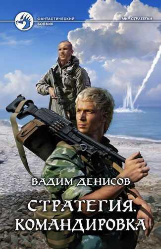 Вадим Денисов. Стратегия 6. Командировка